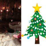 クリスマスツリーの先端の星がイエス・キリスト聖誕の場所に刻まれている。